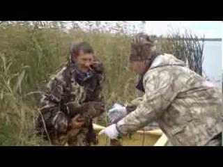 Открытие охоты на утку Видео